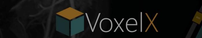 VoxelX