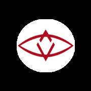Криптовалюта SingularDTV