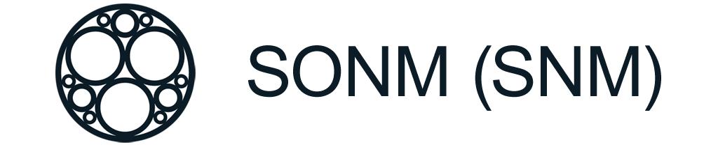Криптовалюта SONM