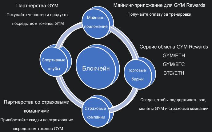 Содержание проекта GYM Rewards