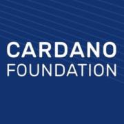 Cardano растет, когда весь рынок падает. Листинг токена ADA на  Binance и Huobi