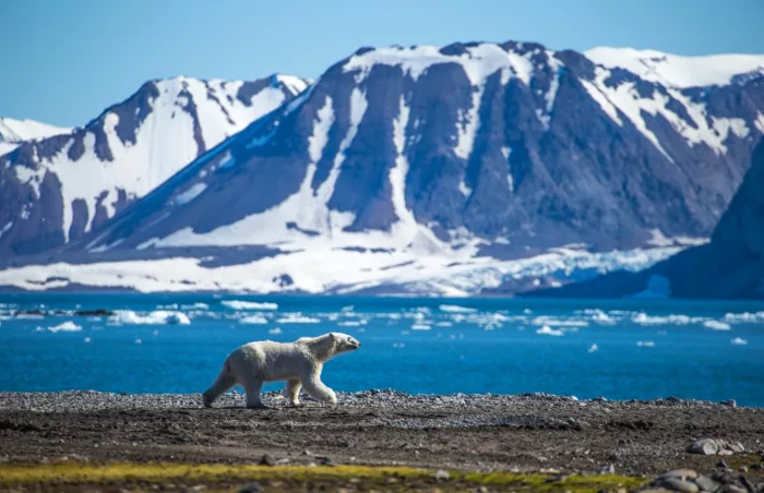 GitHub хоронит биткойн-код внутри арктической горы