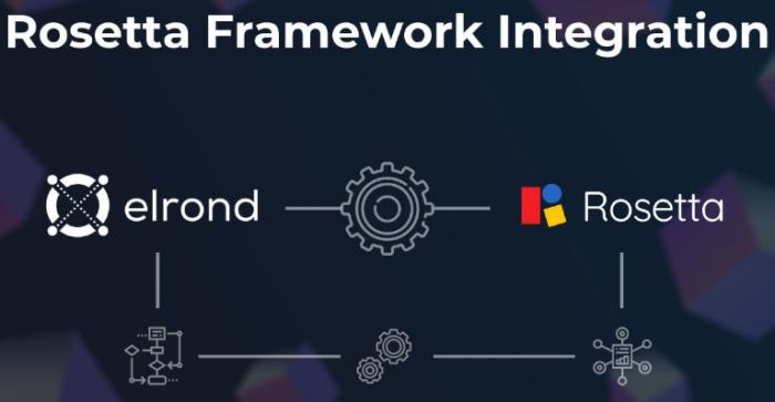 Elrond интегрировал Rosetta API
