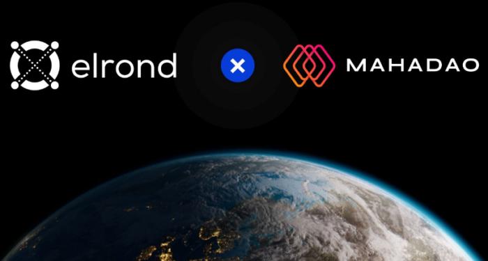 Алгоритмический стейблкоин ARTH от MahaDAO будет запущен в сети Elrond