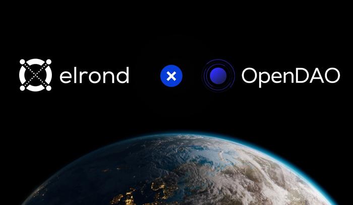 Стейблкоины OpenDAO будут доступны для DeFi-продуктов в сети Elrond