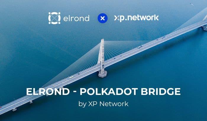 Elrond объявил о сотрудничестве с XP Network