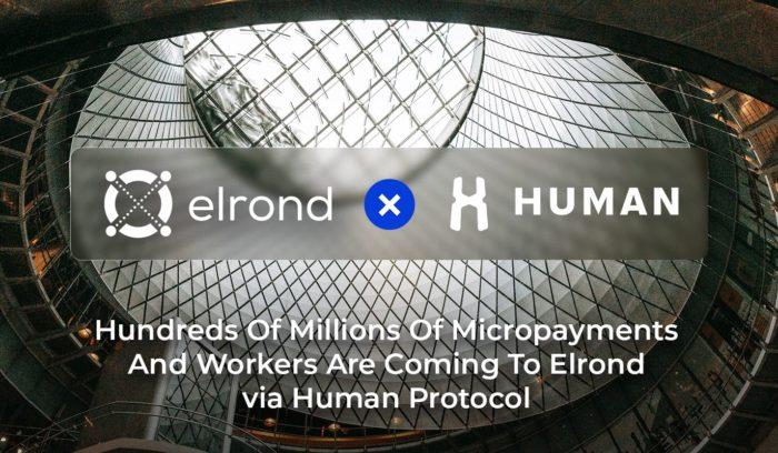Elrond Network объявила о сотрудничестве с HUMAN Protocol